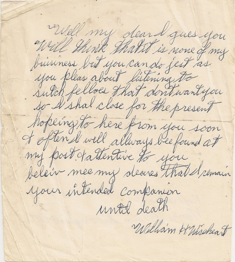 Letter, William H. Wiseheart to Frances Browning, 20 Apr 1876, p. 3